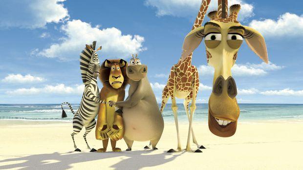 Madagascar - In Kisten verpackt werden die vier Freunde auf ein Schiff nach A...