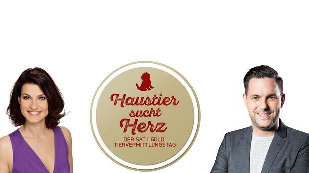 Beim ersten Tiervermittlungstag live im deutschen Fernsehen sucht SAT.1 Gold...