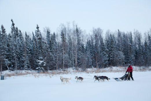 Life below Zero - Überleben in Alaska - Sieben Menschen kämpfen in den unwirt...