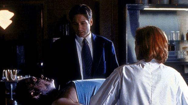 Bei der Autopsie von Phil Rich (Bob Dawson) stellen Scully (Gillian Anderson,...