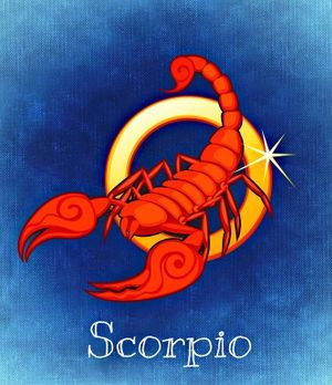 horoskop video jahreshoroskop 2017 skorpion will hoch hinaus sat 1. Black Bedroom Furniture Sets. Home Design Ideas
