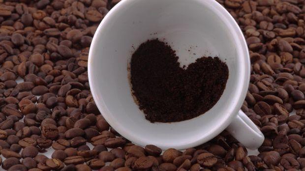 Ab auf den Kompost mit dem Kaffeesatz? Aber erst noch schnell einen Blick in...