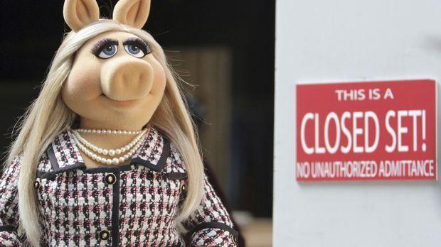 Eine neue Sendung wird geplant - Kermit hat die Schauspielerin und Regisseuri...