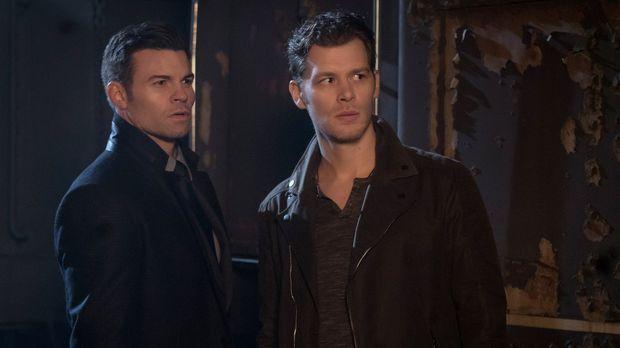 Während Klaus' (Joseph Morgan, l.) und Elijahs (Daniel Gillies, r.) Geister i...