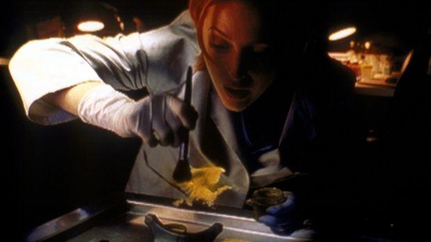 Scully (Gillian Anderson) versucht, die unsichtbare Leiche wieder sichtbar zu...