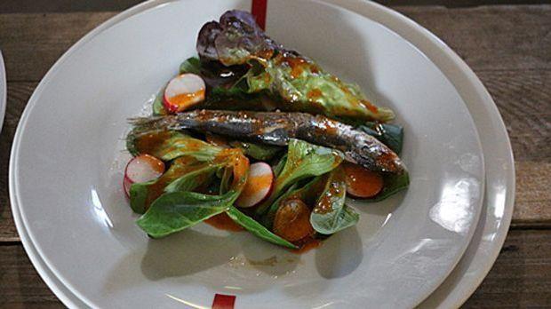 Salat_Fisch-rot