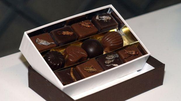 Schokoladen - Heuschrecken