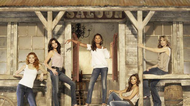 (7. Staffel) - Neue Dramen ereignen sich in der Wisteria Lane: Lynette (Felic...