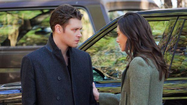 Während Klaus (Joseph Morgan, l.) und Hayley (Phoebe Tonkin, r.) auf der Such...
