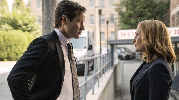 Der Tod eines Wissenschaftlers ruft Mulder (David Duchovny, l.) und Scully (G...