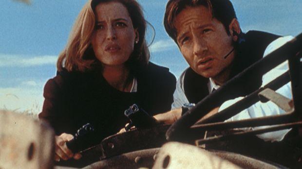 Scully (Gillian Anderson, l.) und Mulder (David Duchovny, r.) beobachten das...
