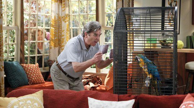 Jahre später taucht plötzlich Debbies und Nathans Papagei wieder auf. Tom (Be...