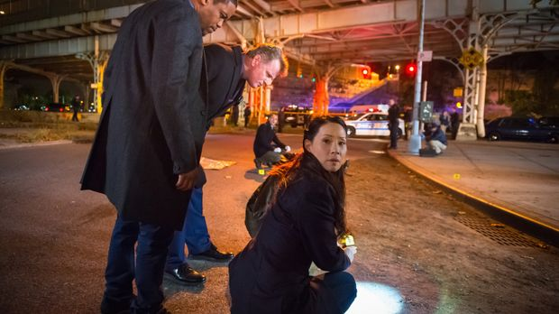 Nachdem ein Copkiller die Stadt unsicher macht, macht sich das Team um Watson...