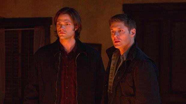 Wie werden Sam (Jared Padalecki, l.) und Dean (Jensen Ackles, r.) mit der ern...