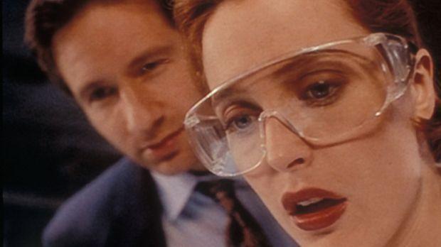 Scully (Gillian Anderson, r.) und Mulder (David Duchovny, l.) sind entsetzt,...