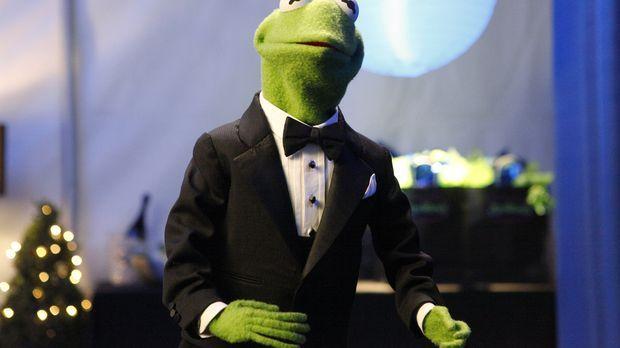 Begleitet Miss Piggy zu einer Filmpremiere: Kermit ... © Nicole Wilder ABC St...