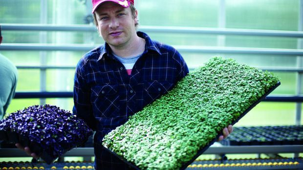 kuchenschrank jamie oliver : Jamie Oliver - Jamie Olivers neues Buch- sixx