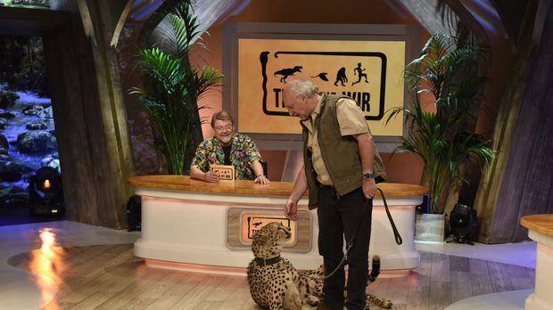 Tiere wie wir - Moderator Jürgen von der Lippe (l.) und Dr. Wolf (r.) stellen...