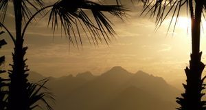 Sonnenuntergang mit Palme