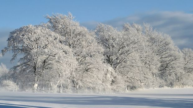 Winteranfang_Pixabay