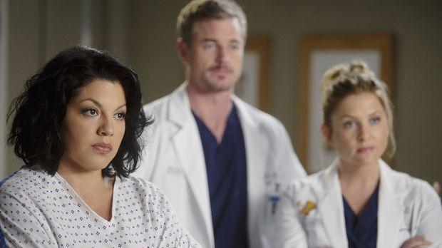 Stehen vor einer neuen Herausforderung: Callie (Sara Ramirez, l.), Mark (Eric...