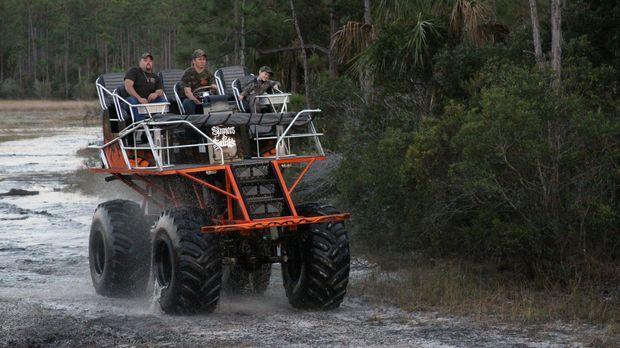 In den Sumpfgebieten im Süden der USA lauern viele Gefahren, wie zum Beispiel...