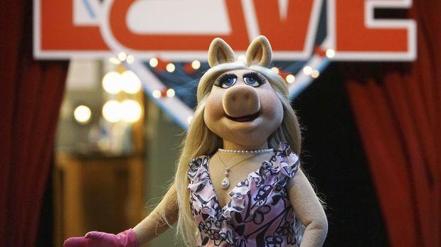 Nach alldem, was im Krankenhaus vorgefallen ist, überdenken Miss Piggy (Bild)...
