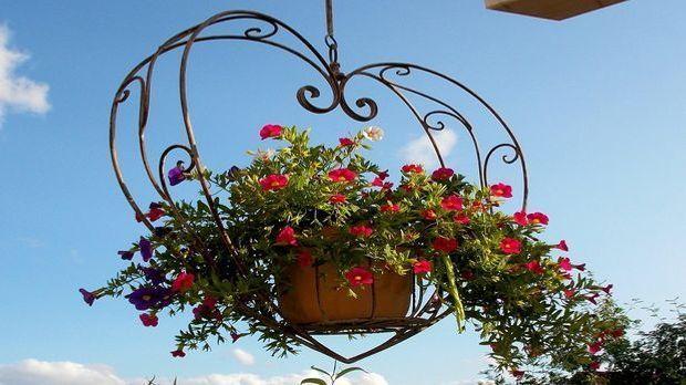 Terrassendeko Pixabay