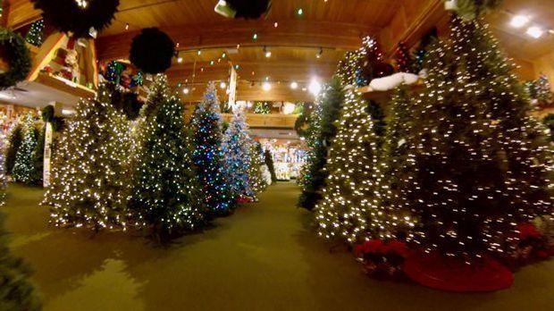 Verrückte Vorweihnachtszeit