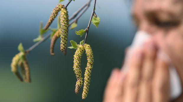 Belastung durch Pollenflug