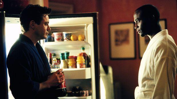 Die Frauen sind für sie immer wieder ein Rätsel: Larry (Robert Downey Jr., l....