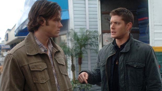 Untersuchen einen neuen mysteriösen Fall: Sam (Jared Padalecki, l.) und Dean...