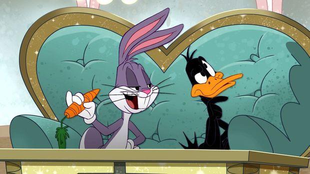 Bugs Bunny, Daffy Duck und Co. erleben lustige Abenteuer und geraten regelmäß...