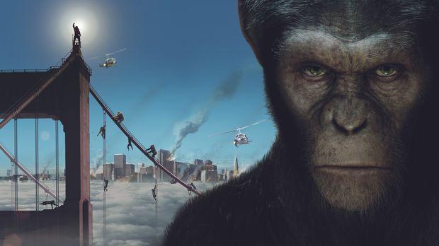 PLANET DER AFFEN: PREVOLUTION - Artwork © 2011 Twentieth Century Fox Film Cor...