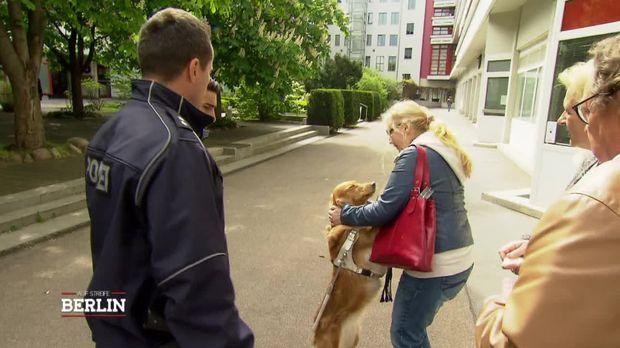 Auf Streife - Berlin - Auf Streife - Berlin - Der Geklaute Blindenhund