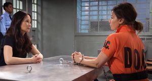 Elementary - Staffel 3 Episode 14: Die Zebra-entführung