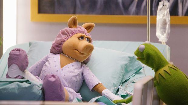 The Muppets - The Muppets - Staffel 1 Episode 15: Die Sau Ist Raus!