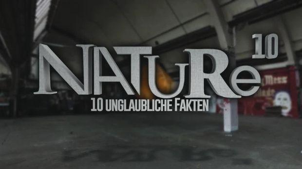 10 Fakten - 10 Fakten - 10 Unglaubliche Fakten über Die Natur