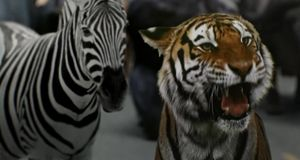 Zoo - Staffel 1 Episode 13: Die Letzte Hoffnung